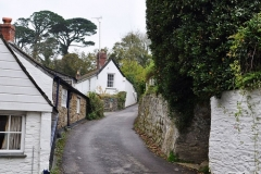 lane down to Helford river