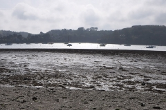 along the Helford river